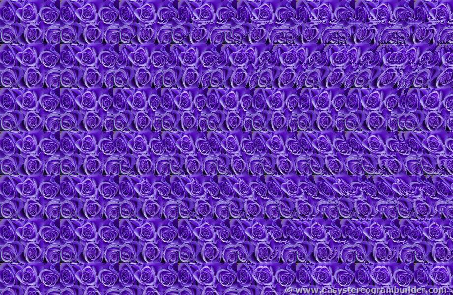 Do You Remember the Art of the Magic Eye? | From Behind the Pen